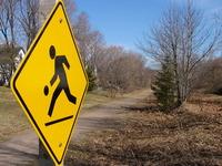 trail-runner-1445332